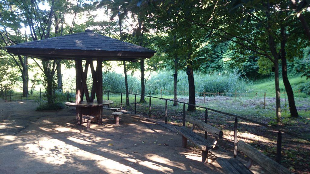 自然観察公園