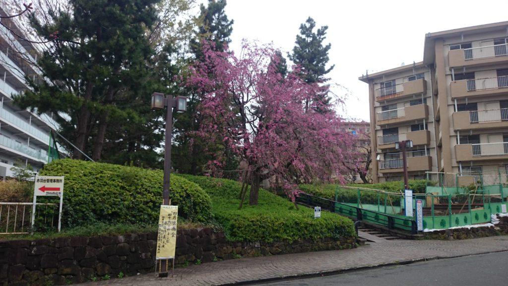 都営住宅周辺(UR建て替え)