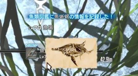 沈没川船周辺_魚蜥蜴