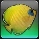 【FF14ヌシ釣り】リムサ・ロミンサ 上甲板層で「ゴールデンフィン」を釣る