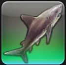 【FF14ヌシ釣り】中央ラノシア サマーフォード沿岸で「ギガシャーク」を釣る