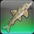 【FF14ヌシ釣り】中央ラノシア 西アジェレス川で「スナガクレ」を釣る