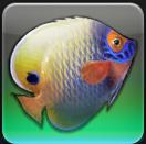 【FF14ヌシ釣り】中央ラノシア ゼファードリフト沿岸で「ザルエラ」を釣る
