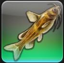 【FF14ヌシ釣り】低地ラノシア モーニングウィドーで「オオゴエナマズ」を釣る