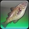 【FF14ヌシ釣り】低地ラノシア キャンドルキープ埠頭で「サーベルタイガーコッド」を釣る