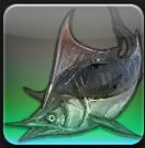 【FF14】東ラノシア ロータノ海沖合(船首)のヌシ「オールドマーリン」を釣る